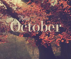 10月の営業のお知らせ