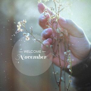 11月の定休日のお知らせ