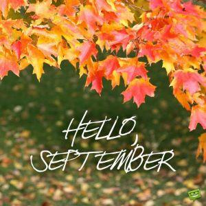 9月の定休日のおしらせ!